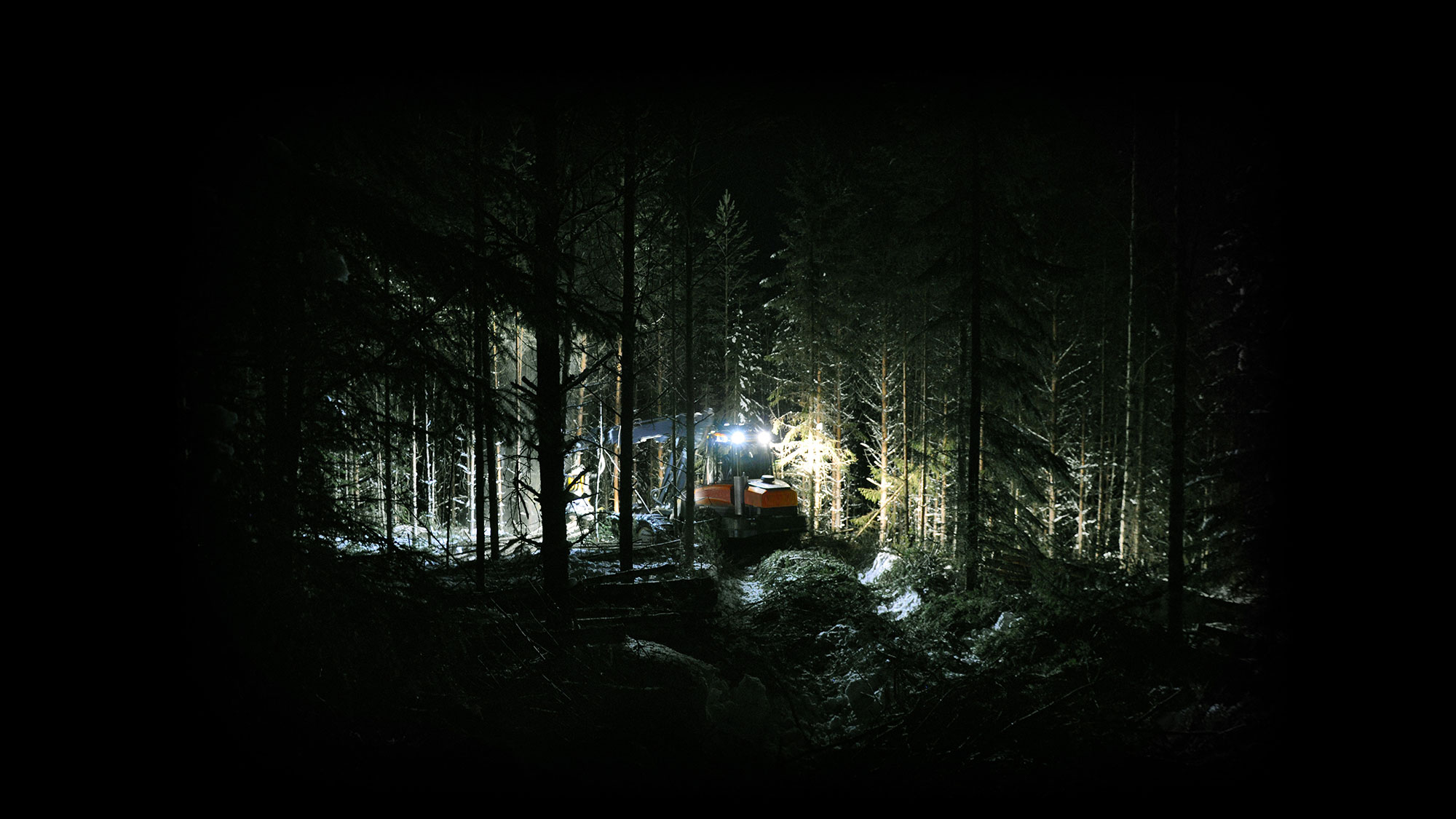 Test winning best forestry light